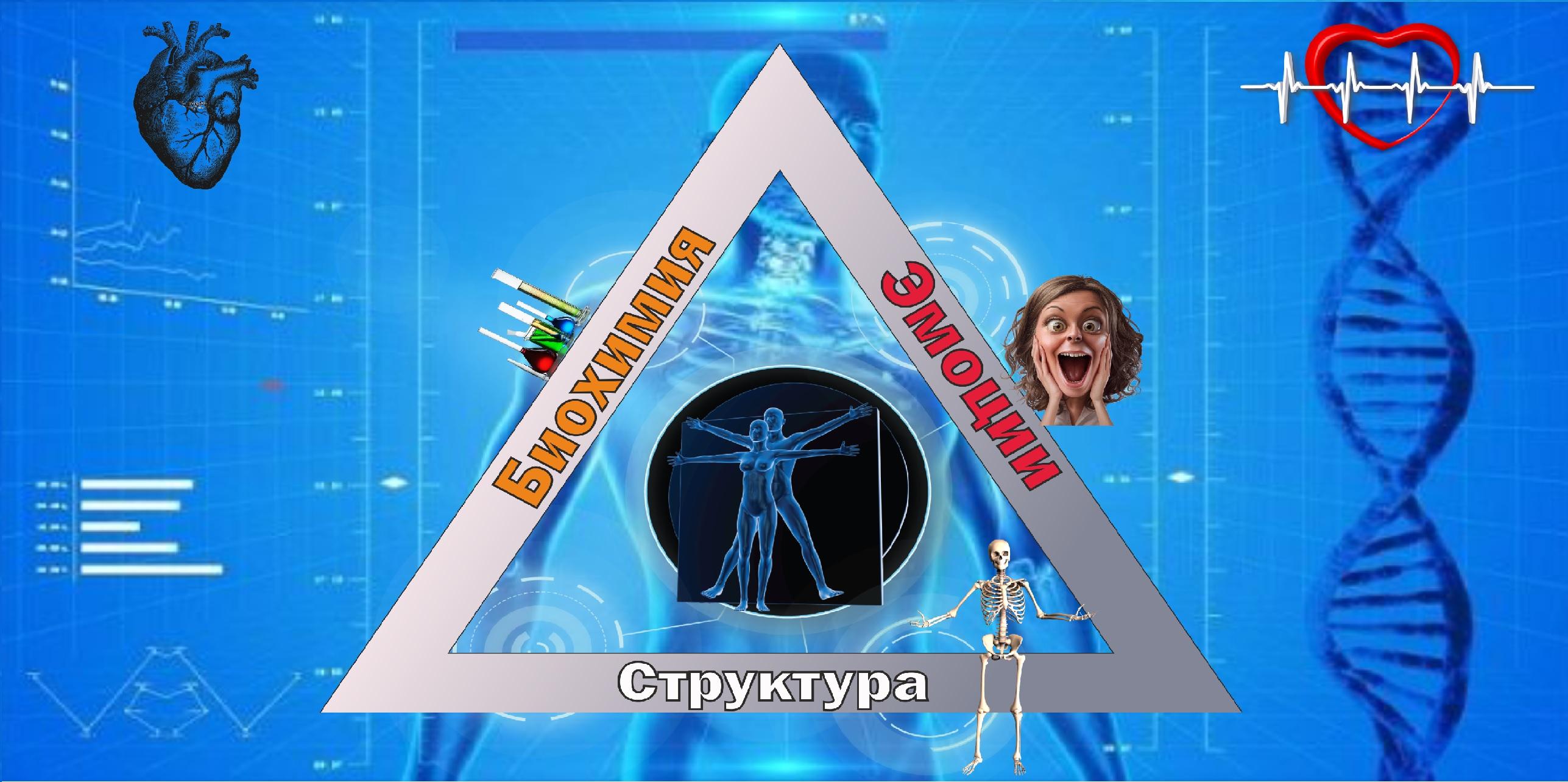 cuerpo_humano__descubren_nuevo-organo_cuerpo_humano.jpg_1718483347.jpg
